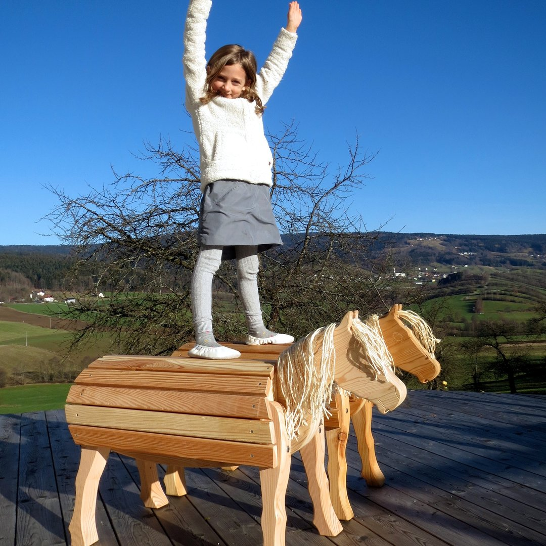 holzpferd bayerwald pony vroni holzpony klein f r garten. Black Bedroom Furniture Sets. Home Design Ideas